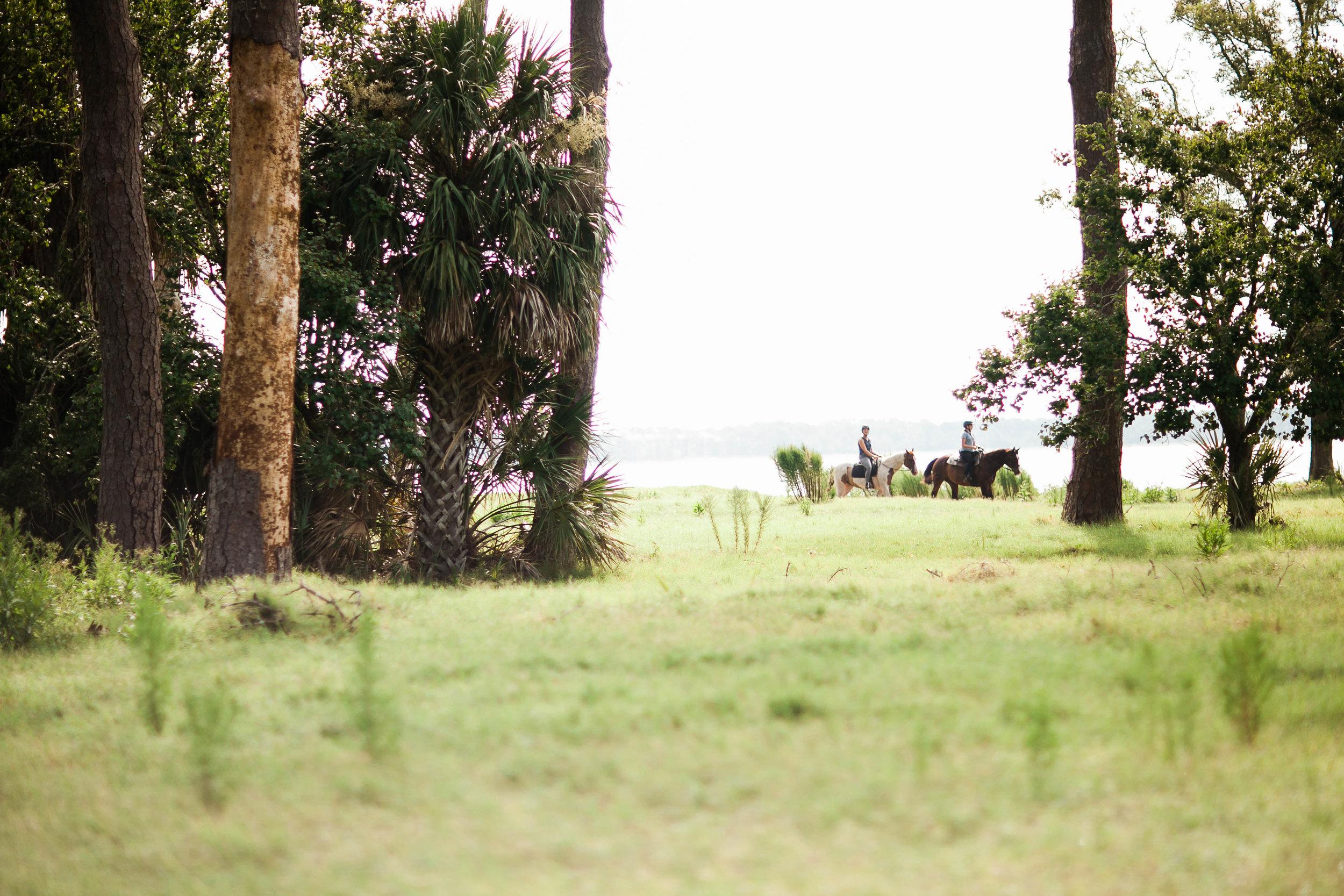 cassandra.dunning-72.jpg