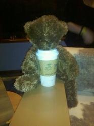 coffee bear.jpg