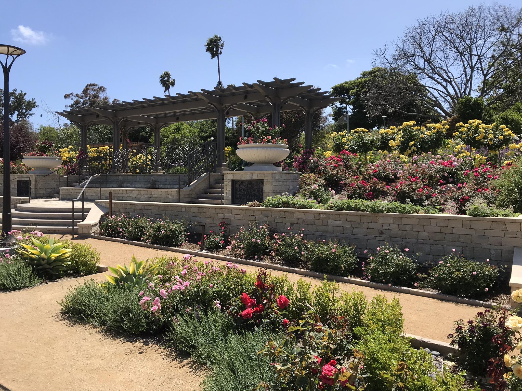 South Coast Botanical Gardens New Rose Garden Designed by Landscape Architect Deborah Richie-Bray