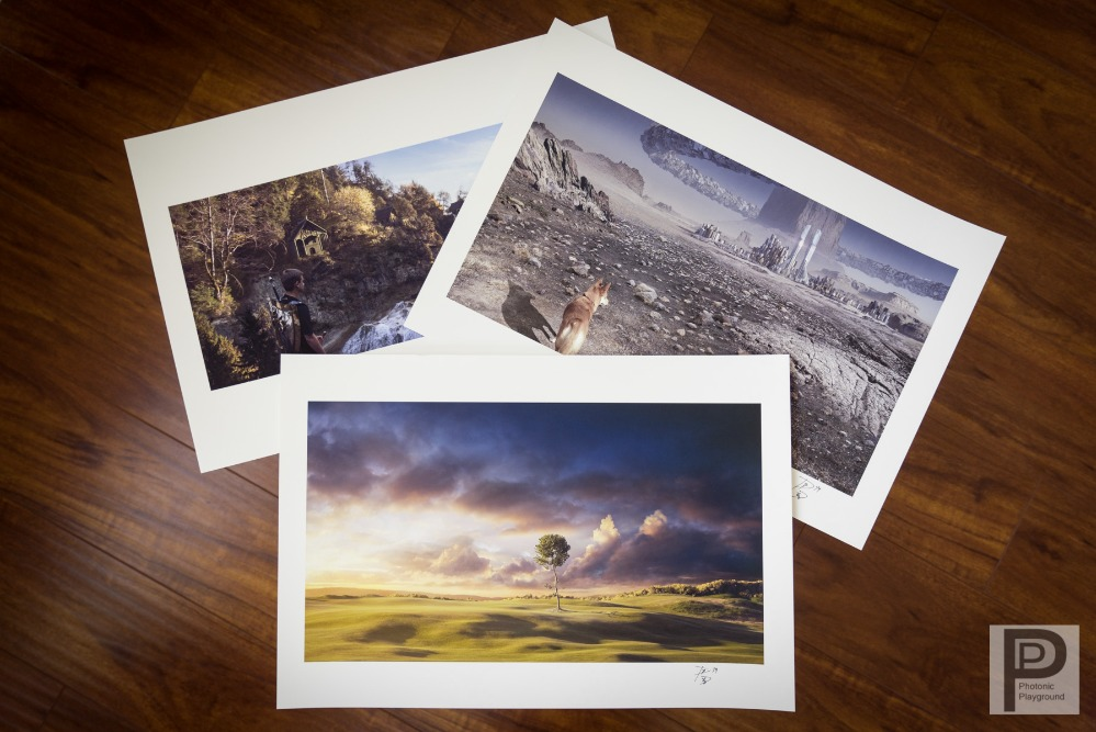 "Complete set of David's 13x19"" giclee prints"