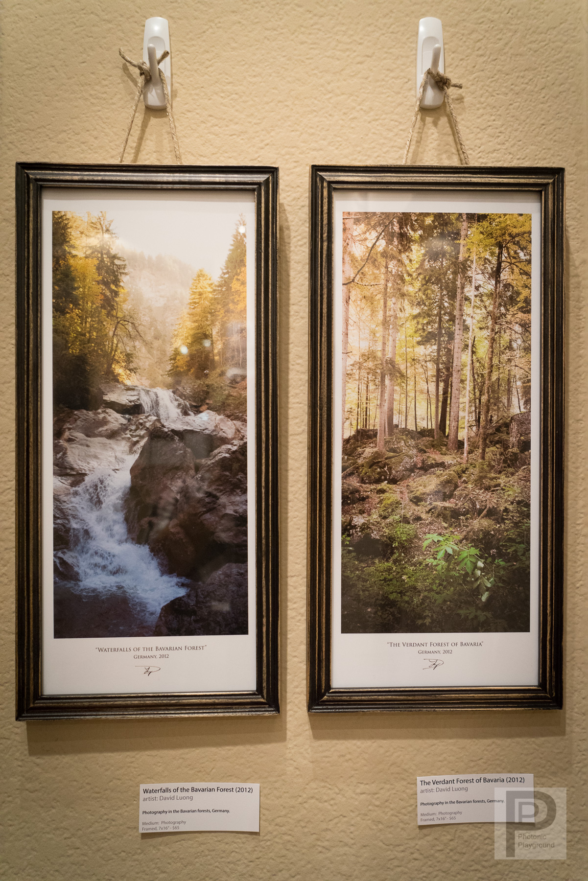 "Left: ""Waterfalls of the Bavarian Forest"" Right: ""The Verdant Forest of Bavaria"""