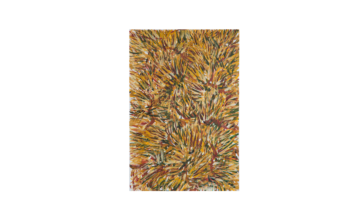Spinifex, 2012 • gouache on paper • (h)189mm x (w)130mm