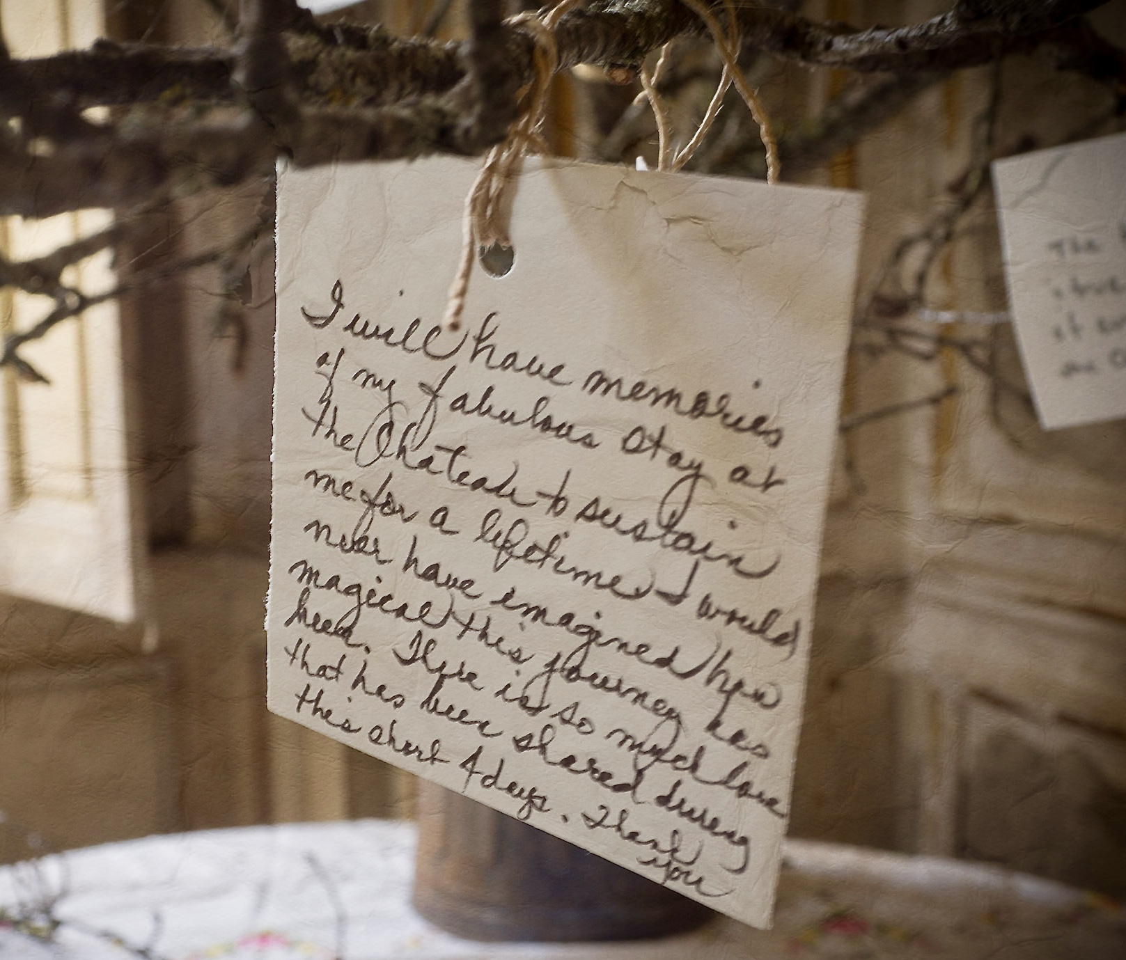 Photo of the Château Memory Tree taken by Betty Girardeau x
