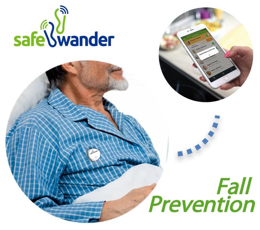 SafeWander1.jpg