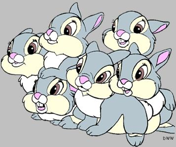 rabbits pic for site.jpg