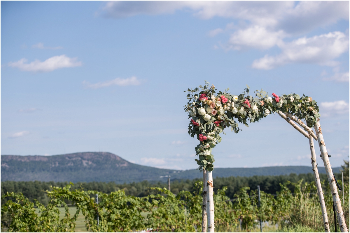 Black-Birch-Vineyard-Wedding-Four-Wings-Photography_0044.jpg
