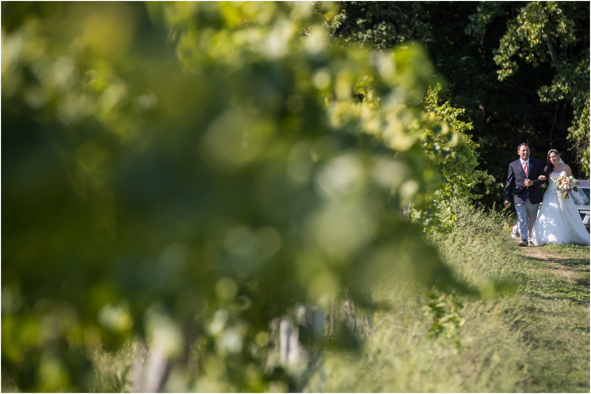 Black-Birch-Vineyard-Wedding-Four-Wings-Photography_0046.jpg