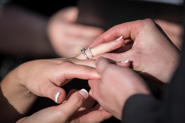 ZukasFarm_Spencer_MA_Wedding_Fourwingsphotography-26.jpg