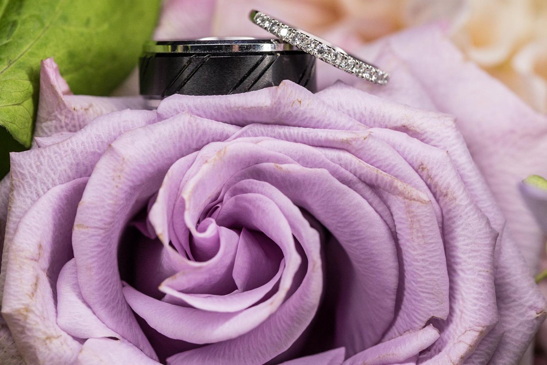 ZukasFarm_Spencer_MA_Wedding_Fourwingsphotography-40.jpg