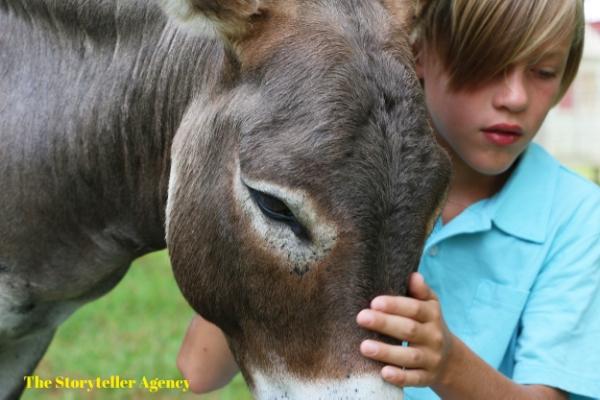 Boy and Donkey 1.jpg