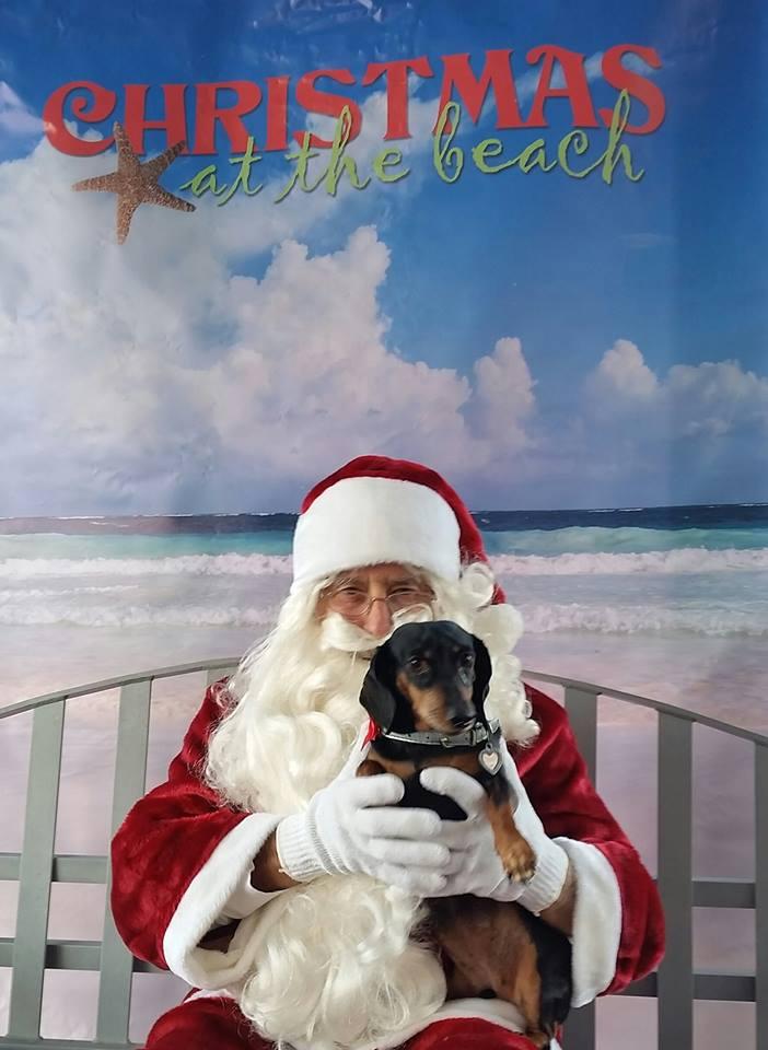christmas at the beach.jpg