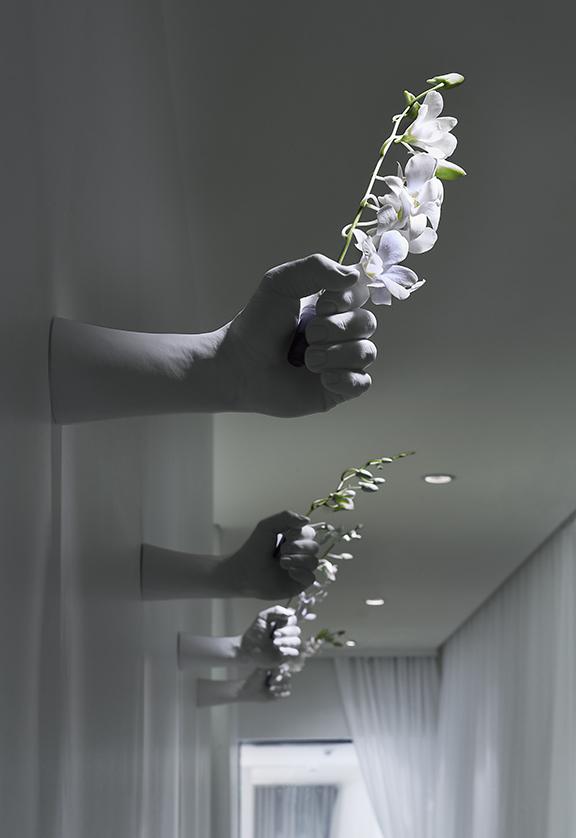 HallwayFinalWeb.jpg
