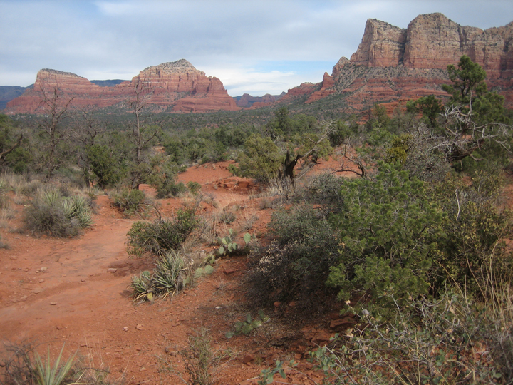 sedona-landscape.jpg