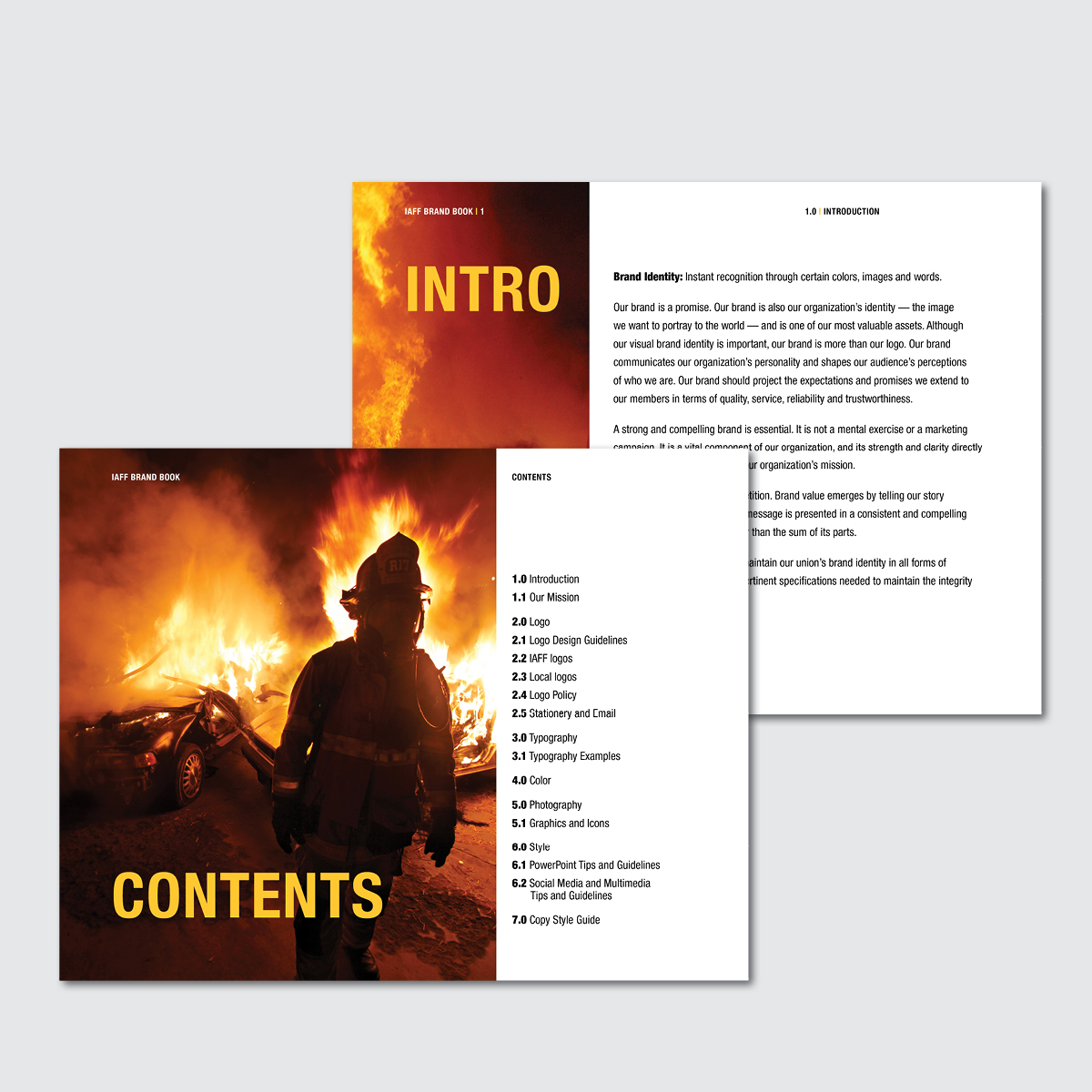 portfolio_IAFF_brandbook2.jpg