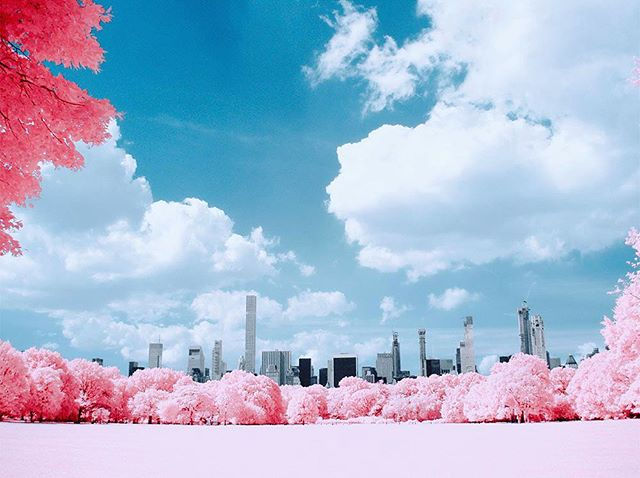 Another infrared view of Central Park