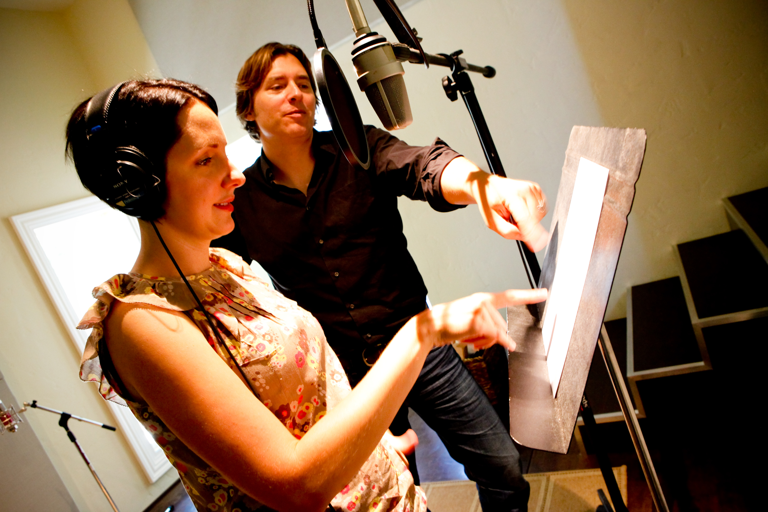 Access to professional musicians and voice-over artists.