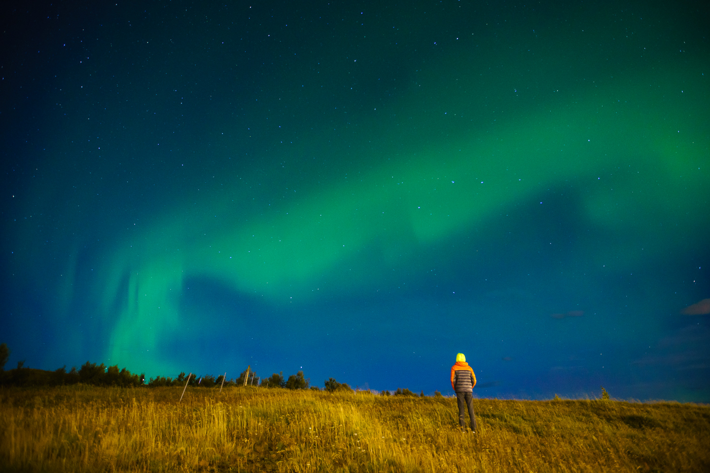 Jay, the youngest on our tour, under the aurora © Paul Nguyen