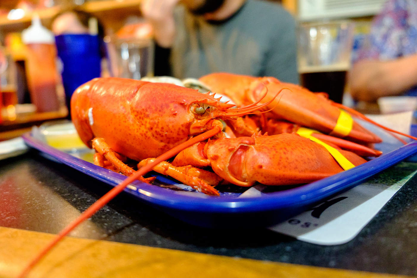 Our annual lobster feast in Acadia, Maine
