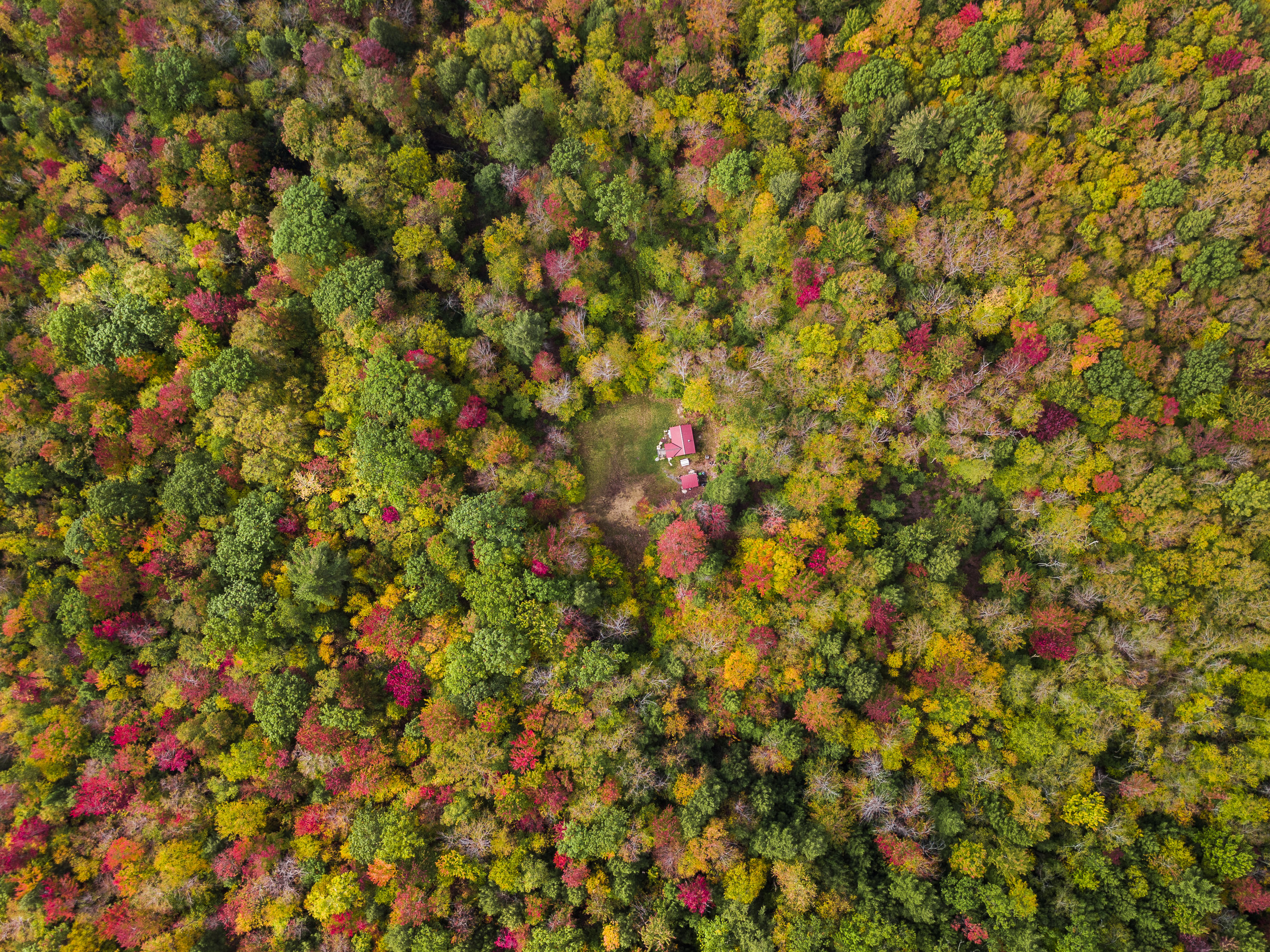 Fall Foliage Drone Photos (1 of 4).jpg
