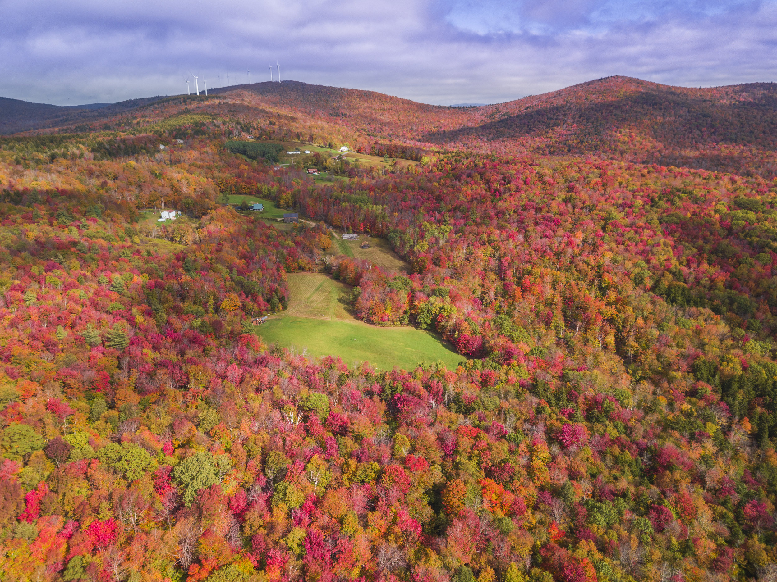 Fall Foliage Drone Photos (2 of 4).jpg