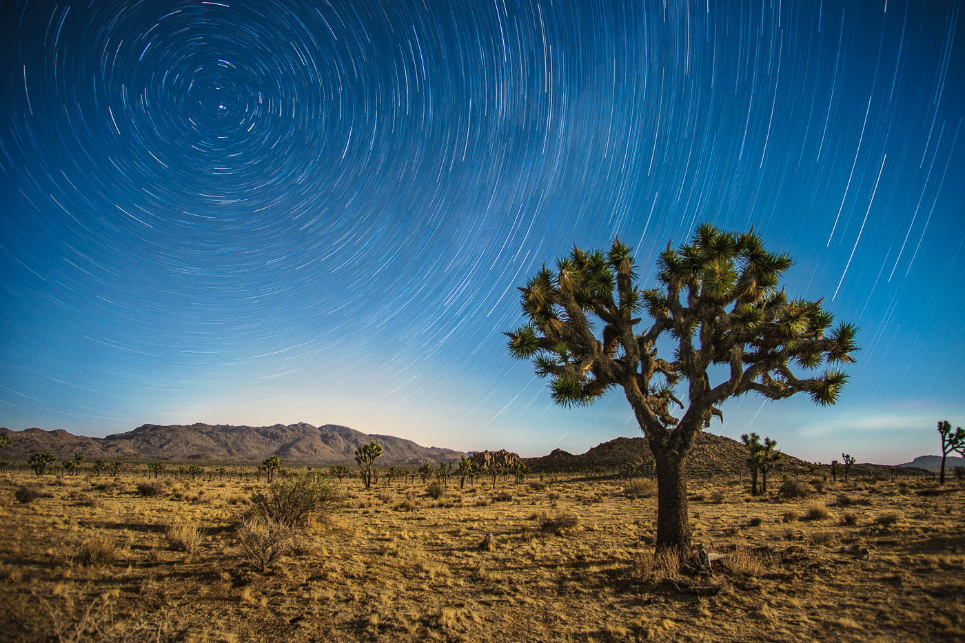 …The result is an hour-long star trail that you can edit into the gorgeous final product!
