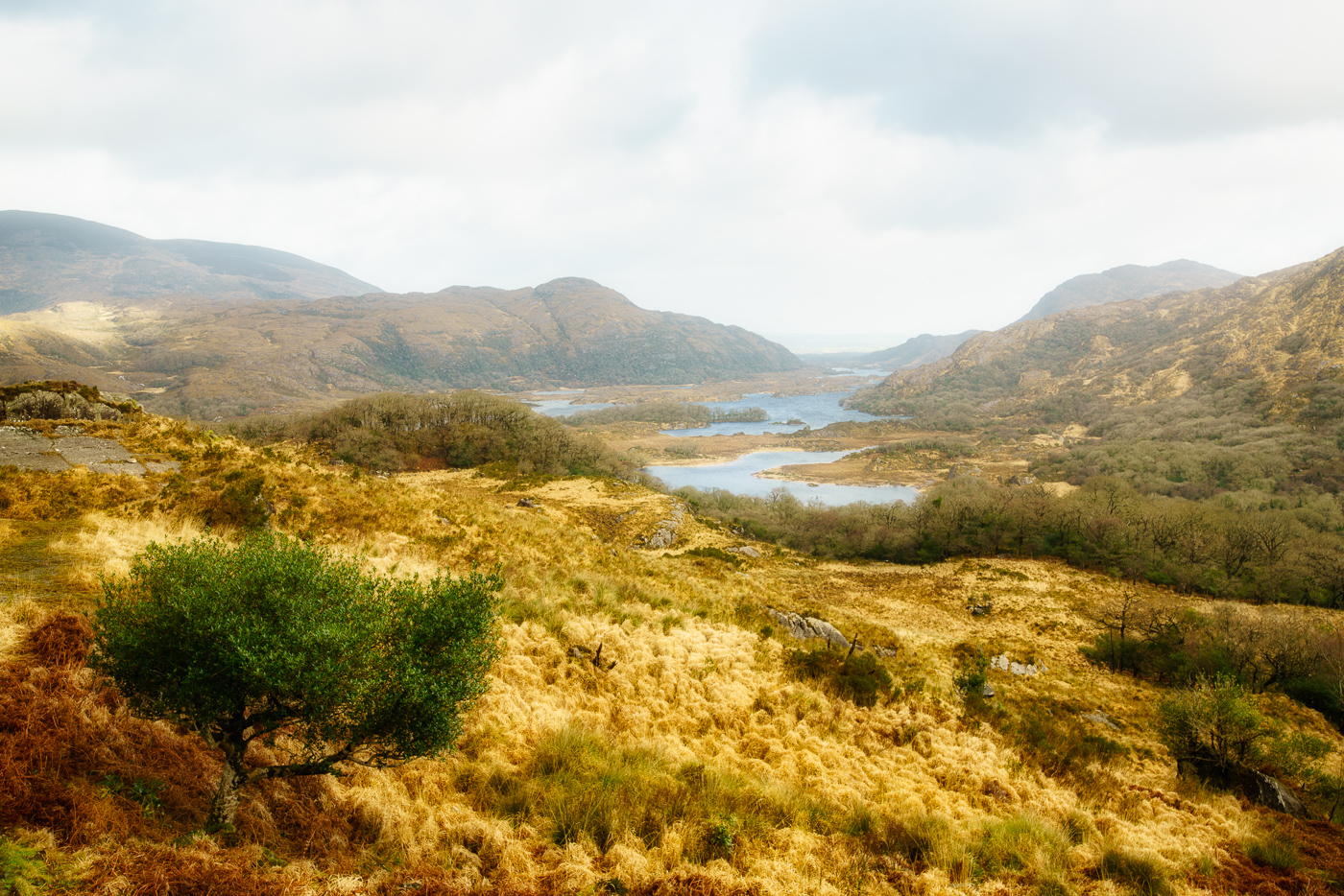 Killarney National Park.jpg