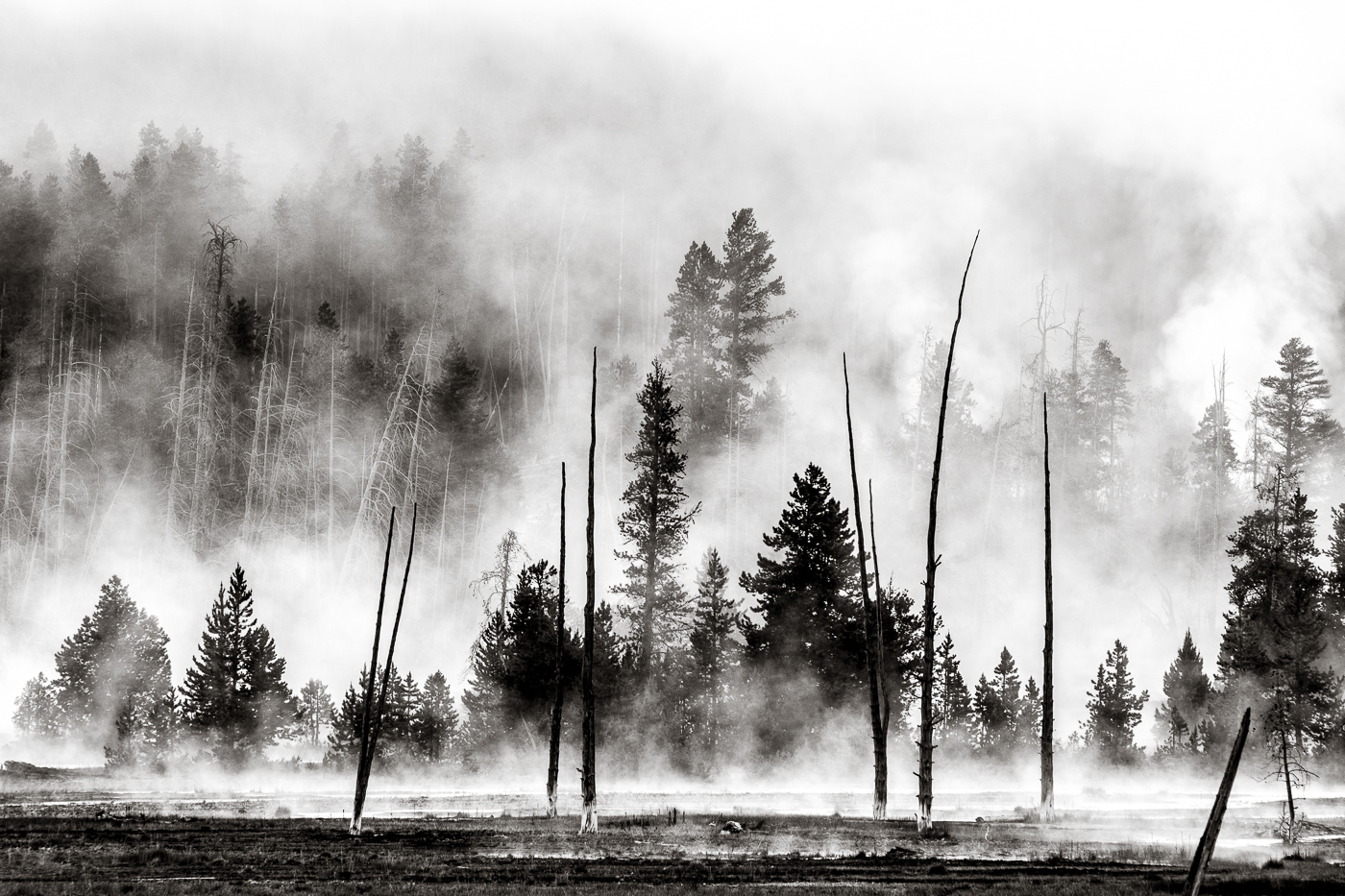 Geyser smoke and black and white really go together © Paul Nguyen