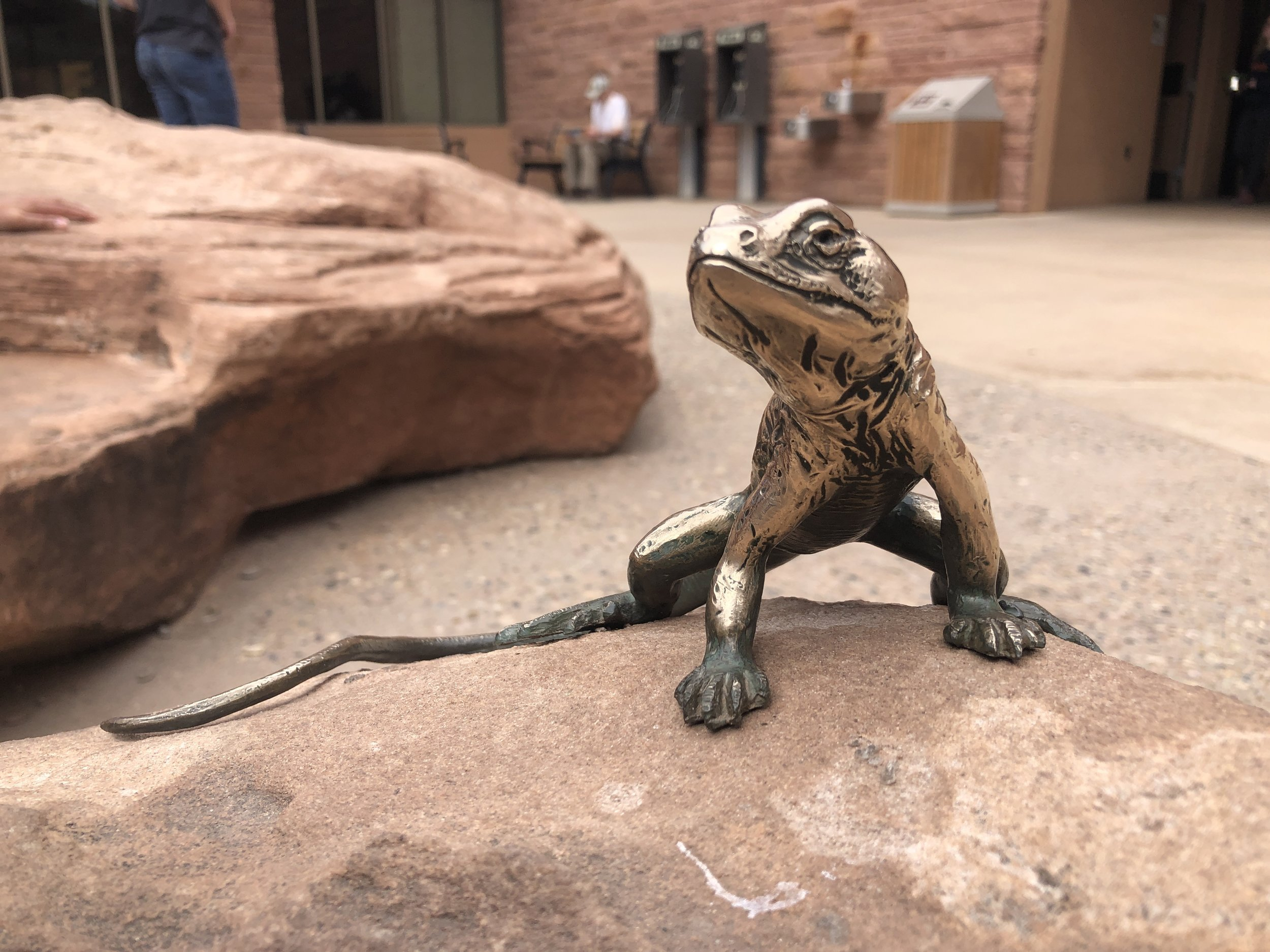 A bronze statue of a Collared Lizard in Arches National Park, Utah.