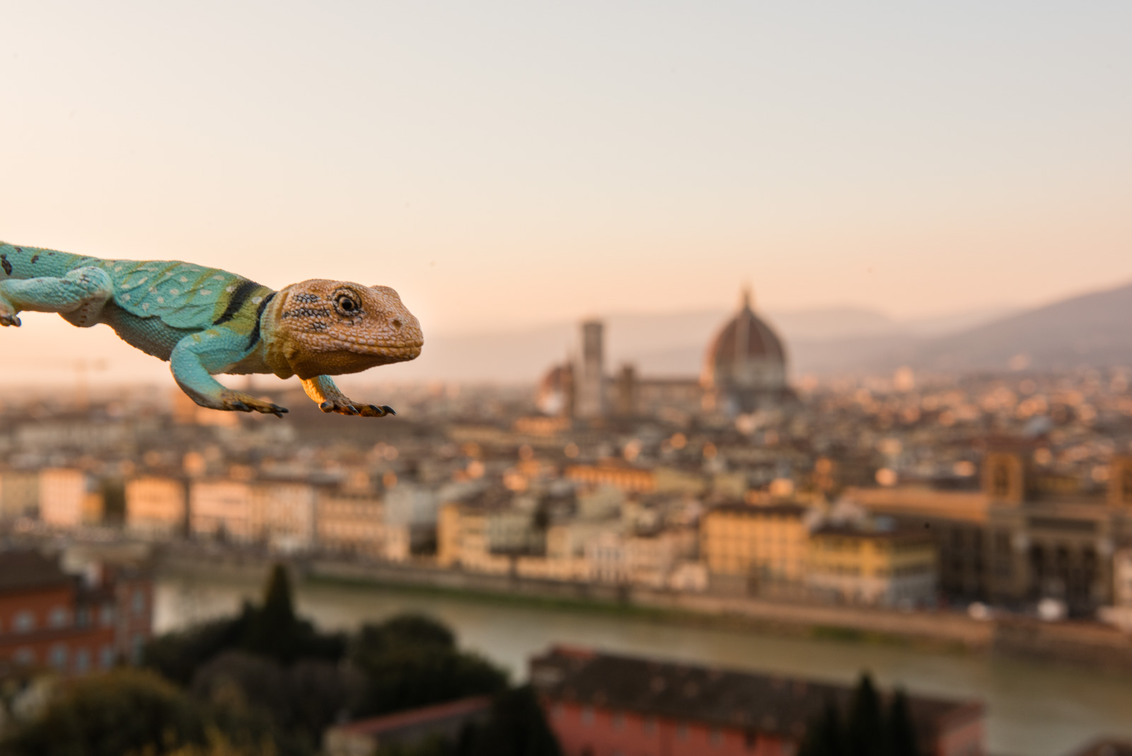Kanab looming over the Duomo in Florence, Italy. Not quite Godzilla.