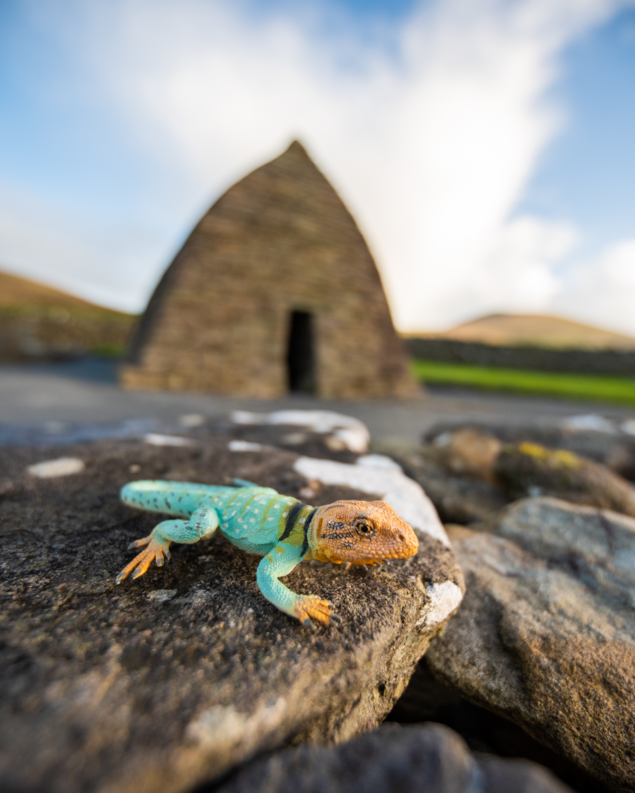 Kanab checking out the ruins of the Gallarus Oratory, Ireland.