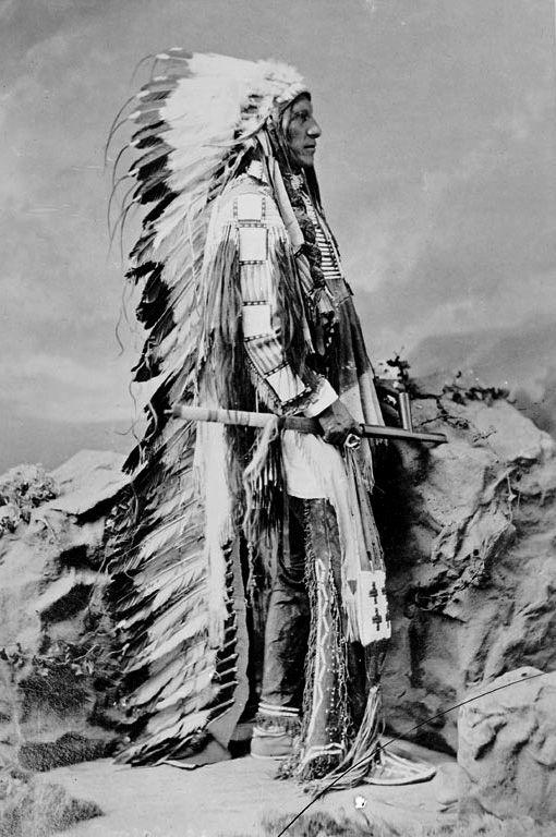 American Horse, Oglala Sioux. 1877