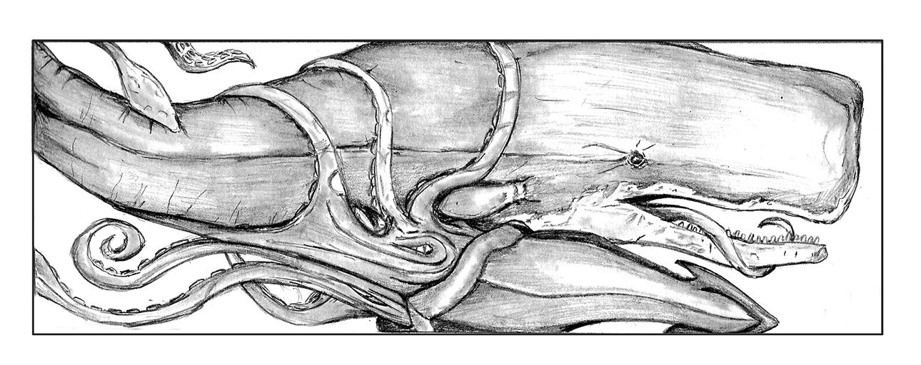 Giant Squid Vs. Sperm Whale