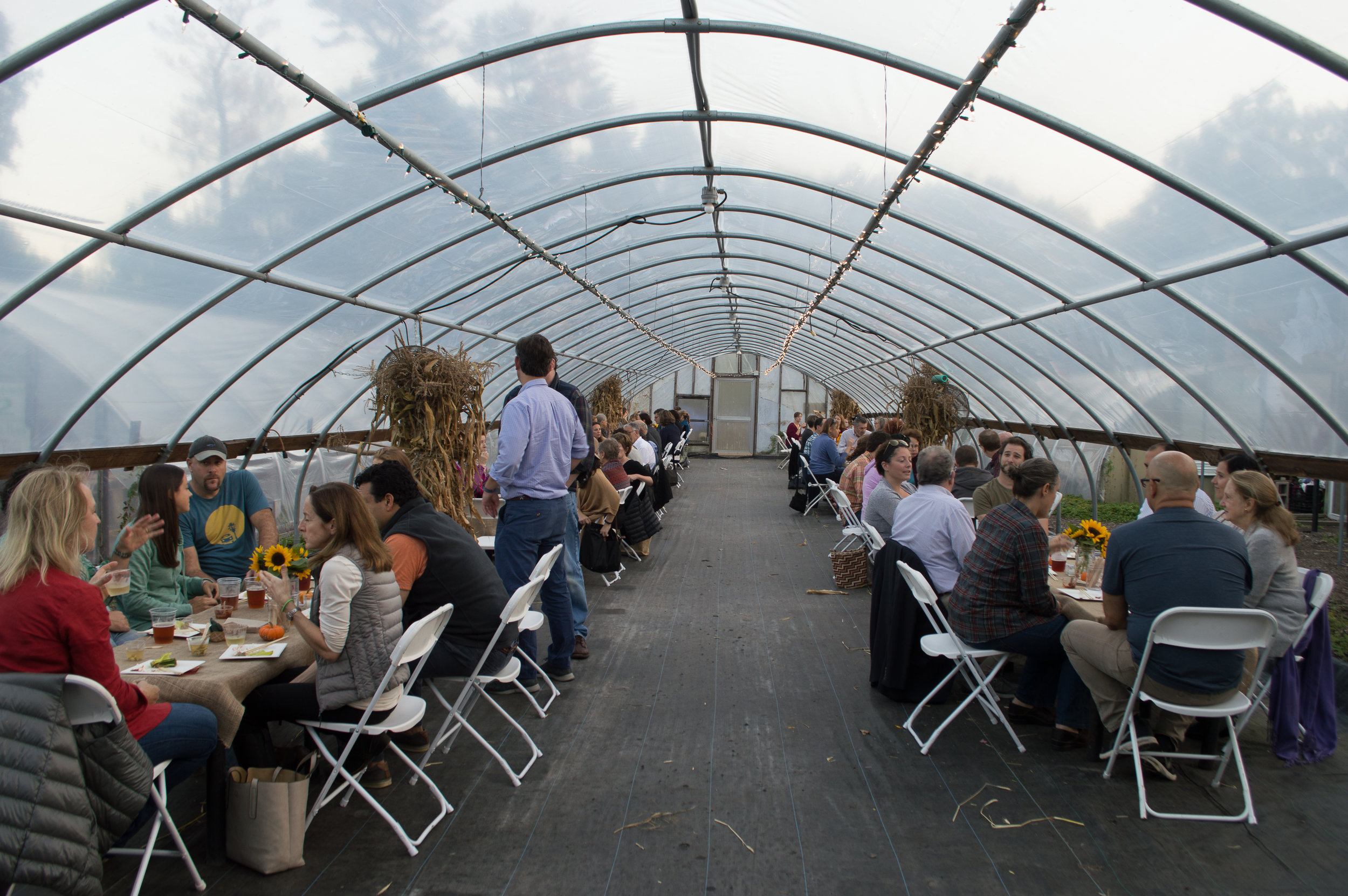 october greenhouse dinner-14.jpg