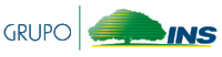 Logo Grupo INS-01.png