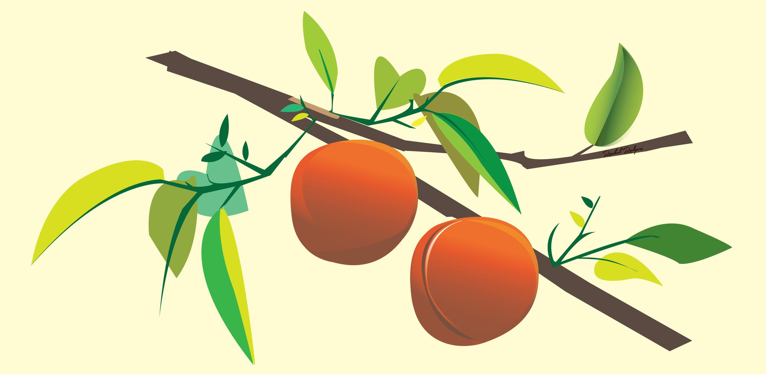 Peach_festival_beige_plain_rgb.jpg