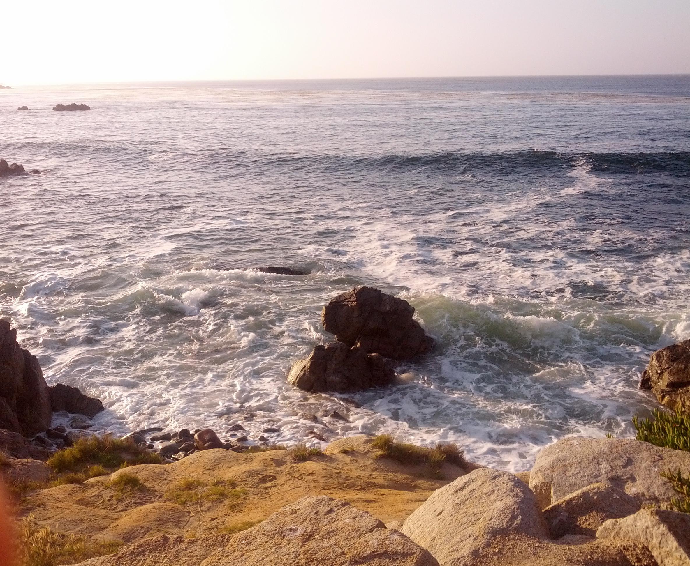 Pacific Grove, California 2013