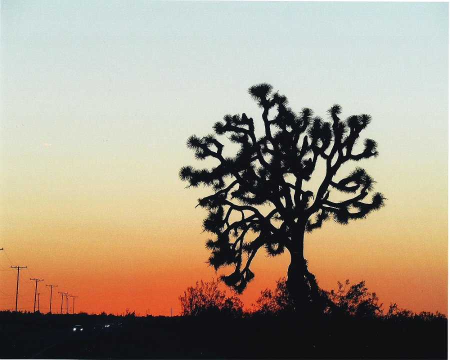 desertsunset1.jpg.jpg