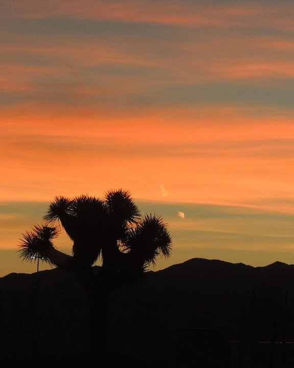 desertsunset4.jpg.JPG