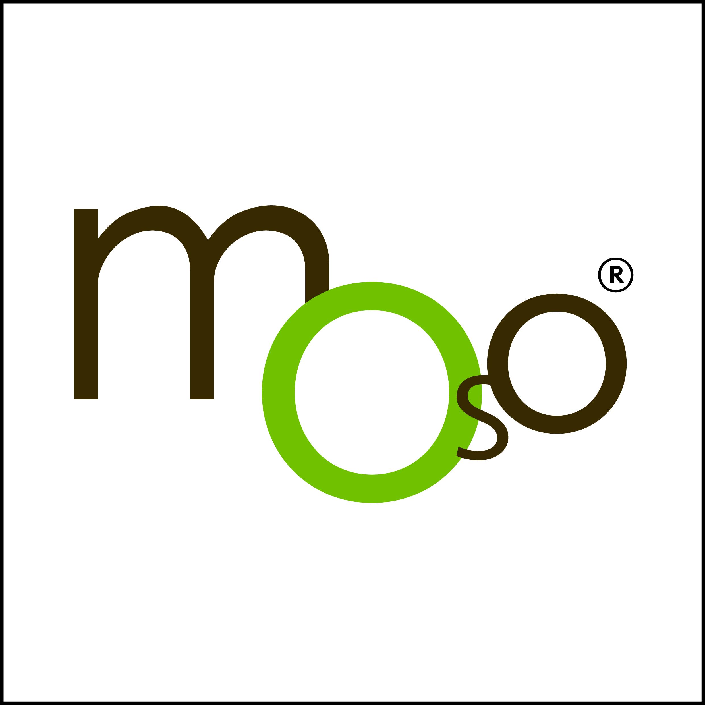 logo MOSO.jpg