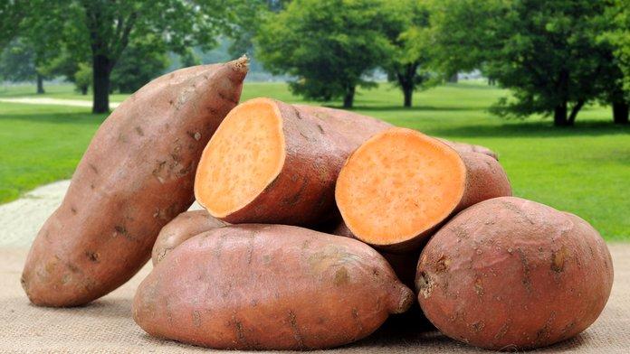 sweet potato.jpg