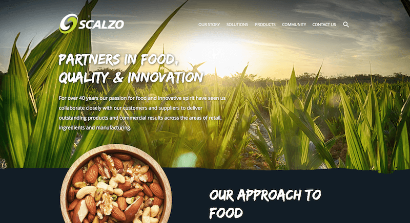 SCALZO FOOD INDUSTRIES.png