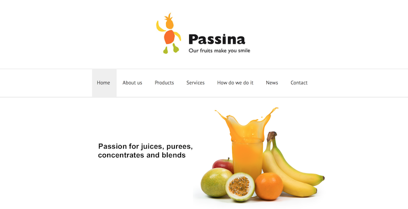 Passina Products BV.png