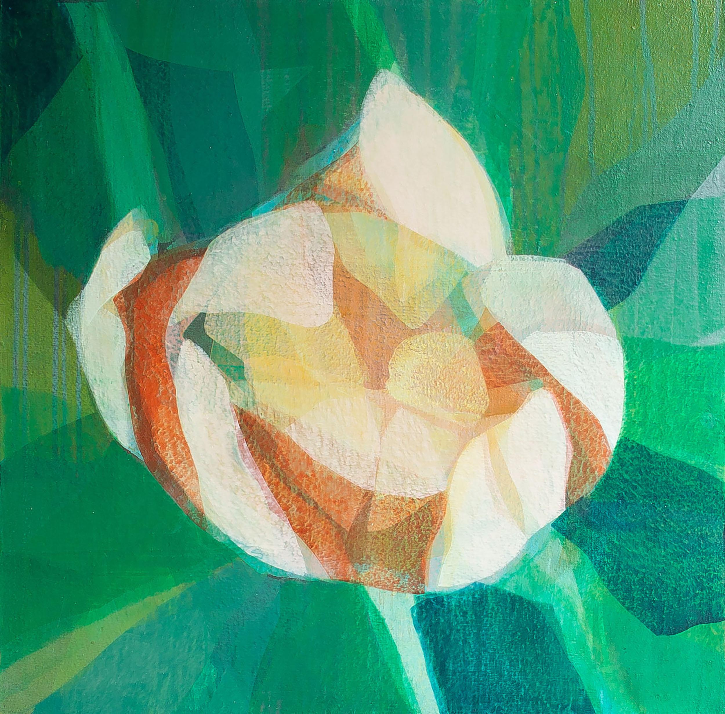kds_vernonburg_tulip_24s_1819SS.jpg