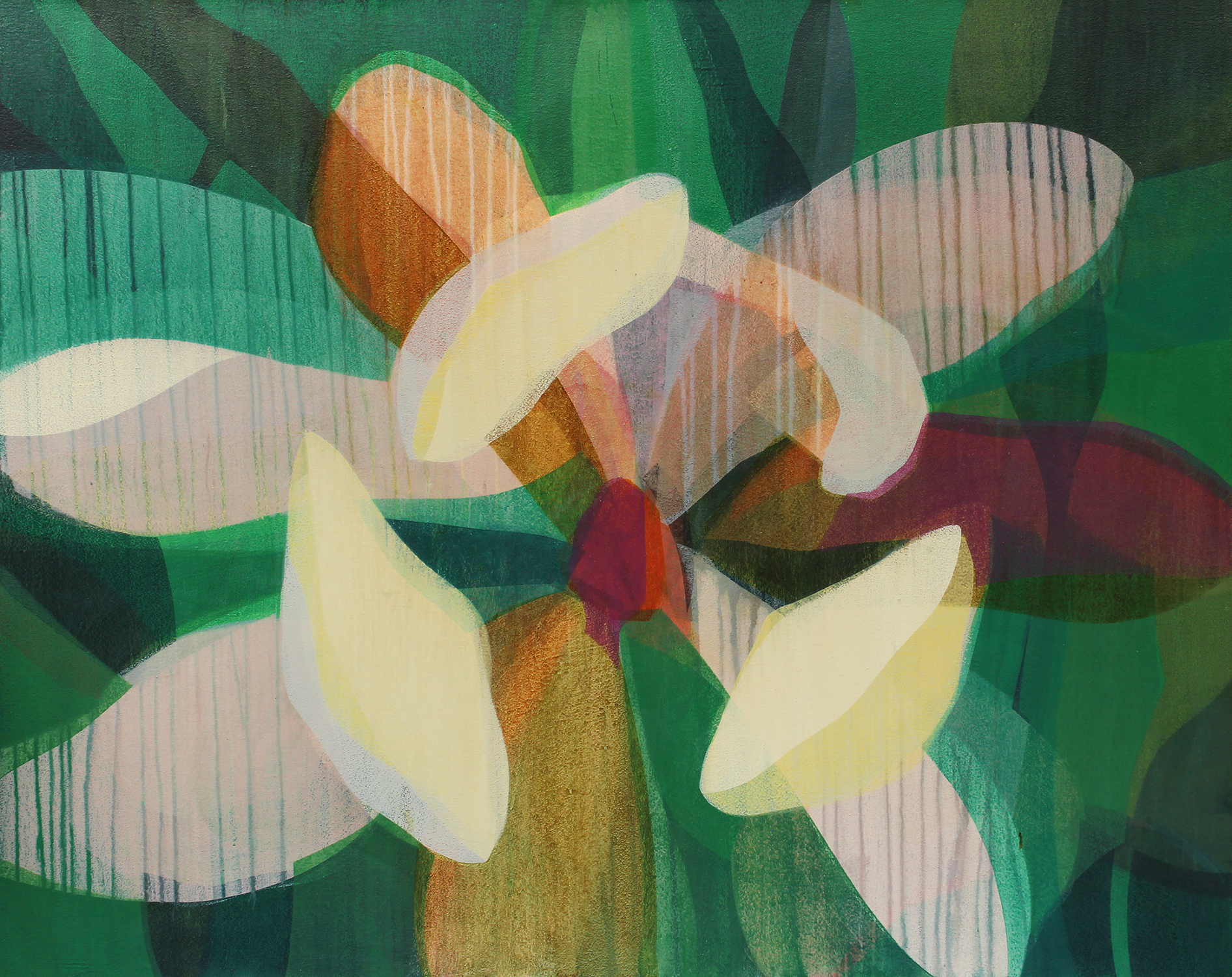 SANDOZ, Katherine - Magnolia - Magenta Orange - 48x60.jpg