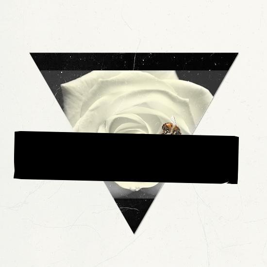 triangle_black.jpg
