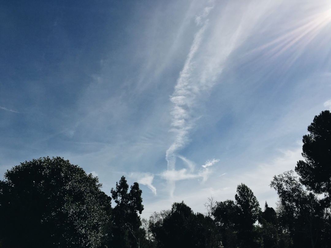 2/2/2017 — Santa Ana, California