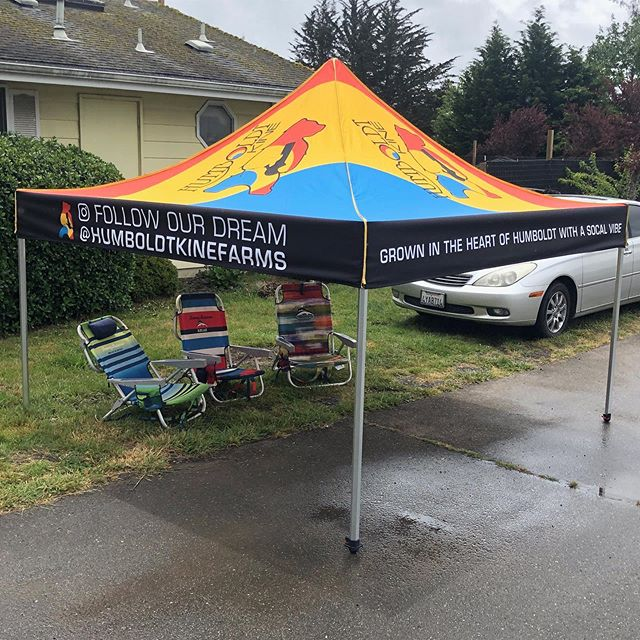 Love it when a plan comes together. We are so looking forward to seeing the @humboldtkinefarms tent making the rounds and providing shade so Eric and crew don't burn all summer! Oh so proud of the great things we can accomplish with clients we love. #humboldtkinefarms #designiseverywhere #popuptent #swag
