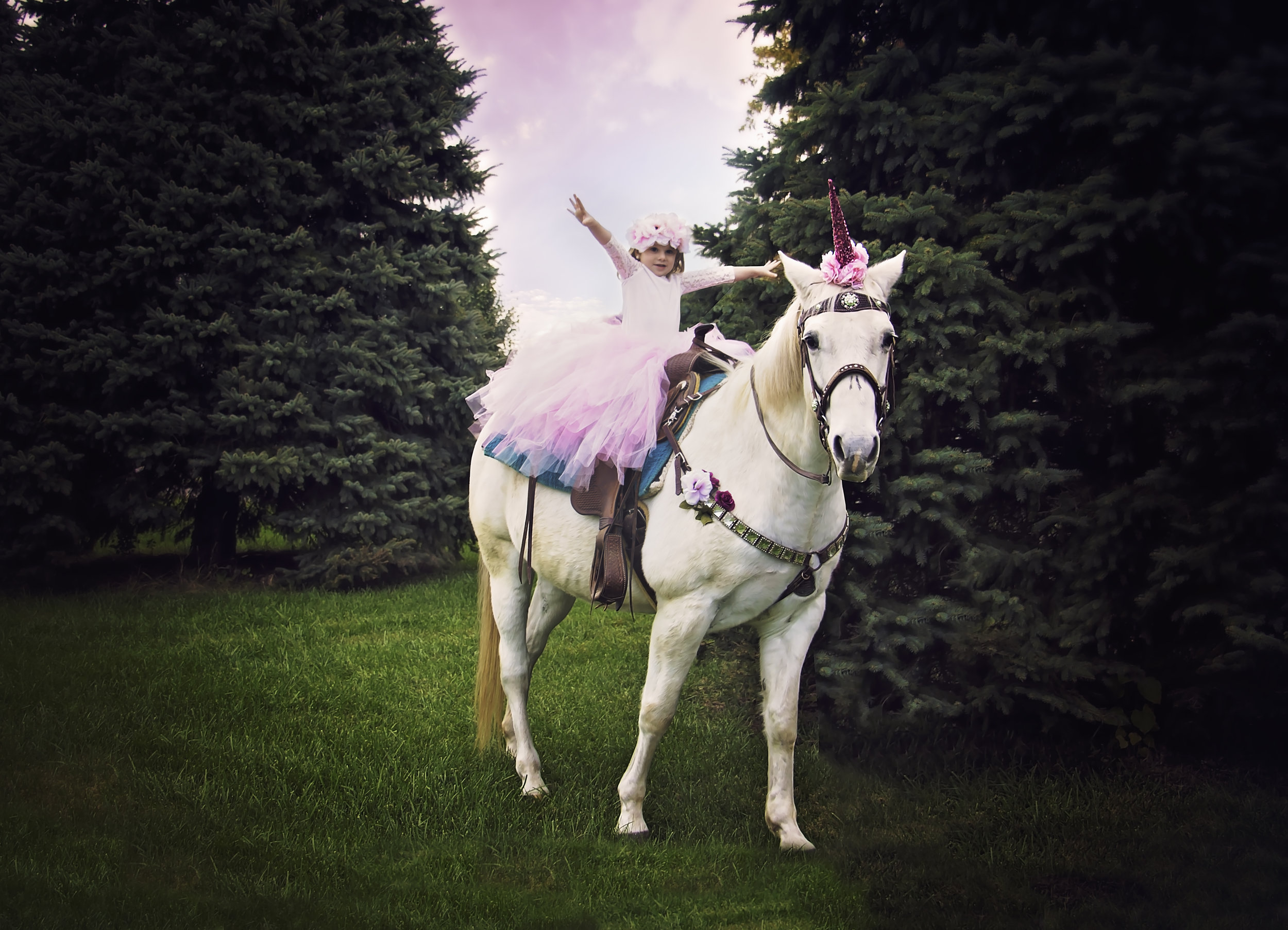 Unicorn Meet and Greet by Say Yes To Jess- Cincinnati Ohio Fine Art Photographer