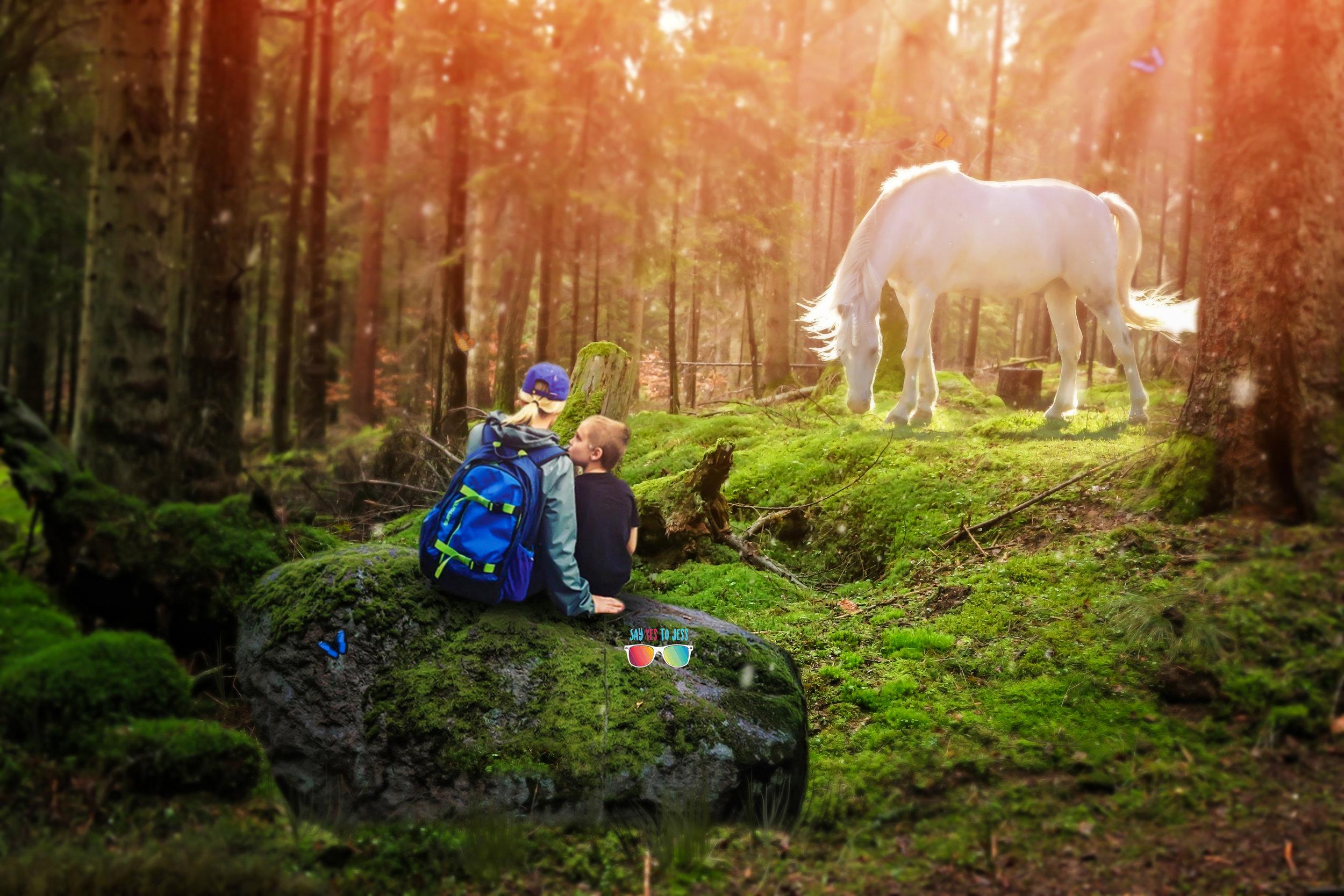 Unicorn experience in Cincinnati ohio Unicorn Photoshoot Say Yes To Jess Cincy photographer.jpg
