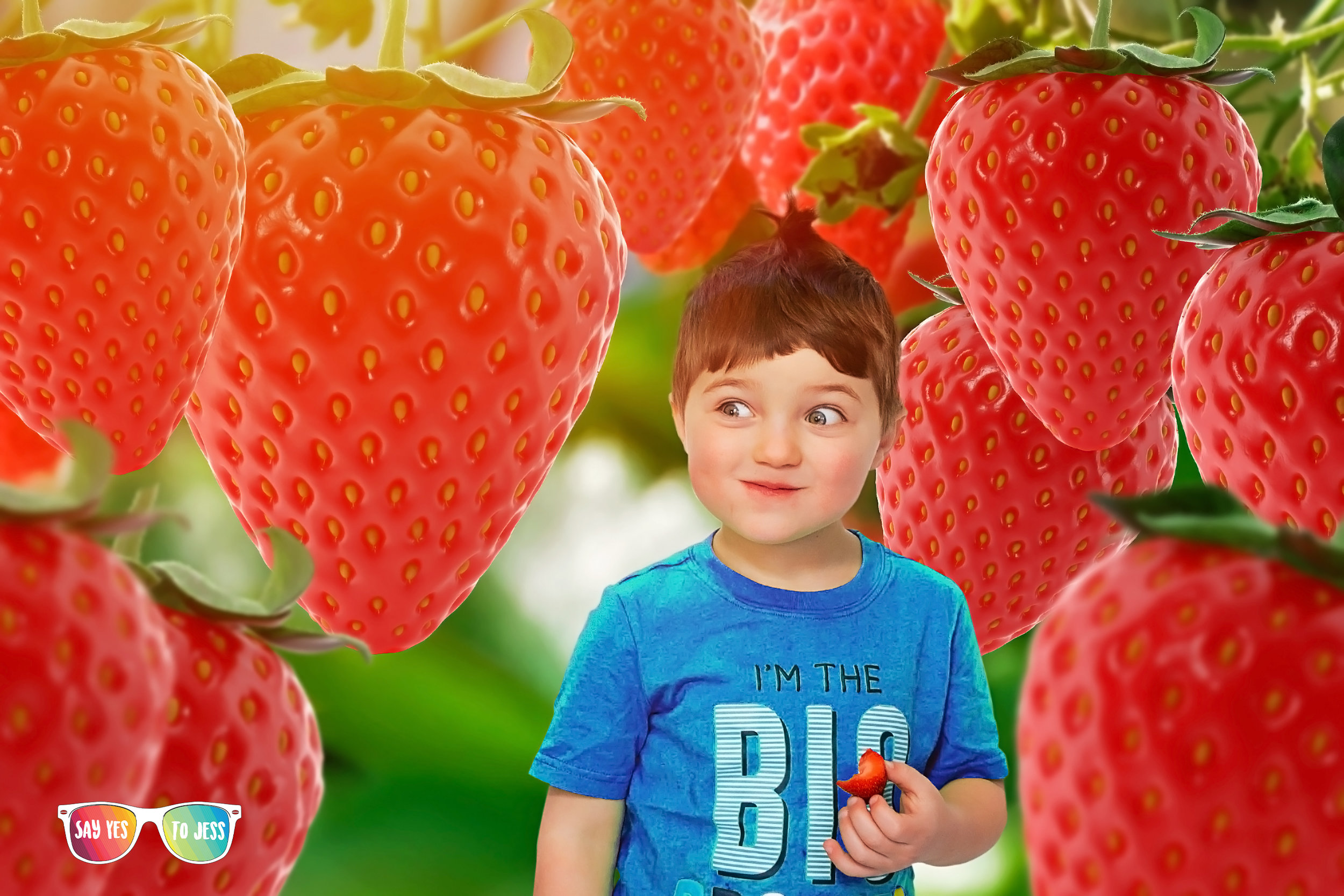 Small Child finds joy by walking through giant strawberry field in a Say Yes to Jess Child Photographer Dream Session!